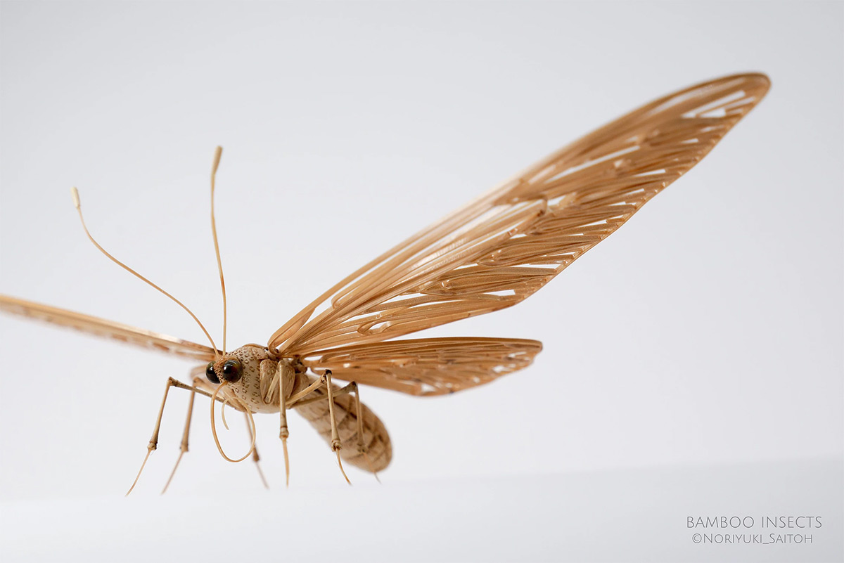 Incredibly Lifelike Insects Crafted out of Bamboo by Noriyuki Saitoh 4 Incredibly Lifelike Insects Crafted out of Bamboo by Noriyuki Saitoh