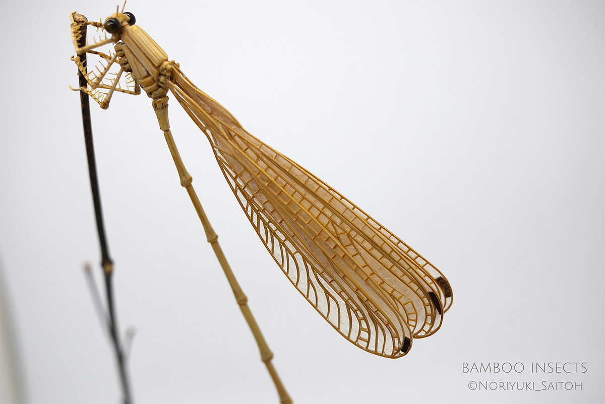 Incredibly Lifelike Insects Crafted out of Bamboo by Noriyuki Saitoh 7 Incredibly Lifelike Insects Crafted out of Bamboo by Noriyuki Saitoh