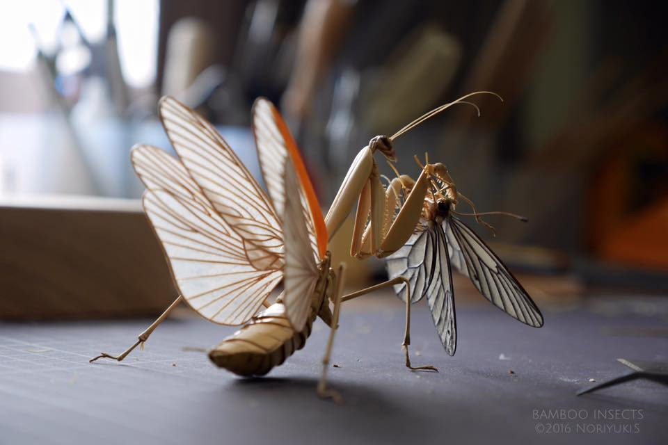 Incredibly Lifelike Insects Crafted out of Bamboo by Noriyuki Saitoh Incredibly Lifelike Insects Crafted out of Bamboo by Noriyuki Saitoh