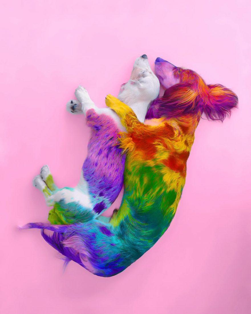 Ramzy Masri Turns The World Into a Rainbow Paradise 9 Ramzy Masri Turns The World Into a Rainbow Paradise