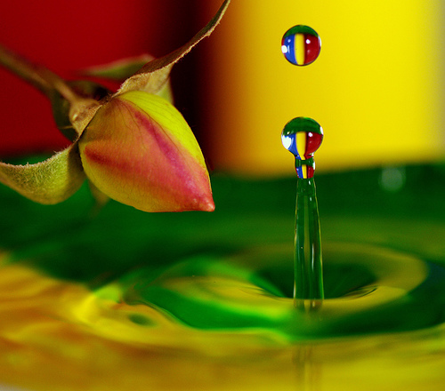 Beautiful Macro Photography Shots 19 25 Macro Photography Shots That Make You Amazed