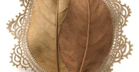 Leaves & Twigs Creative Artworks by Susanna Bauer