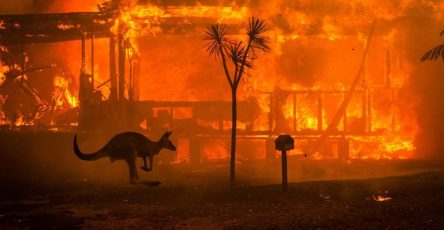 Terrifying Pictures of Australia's Bushfires