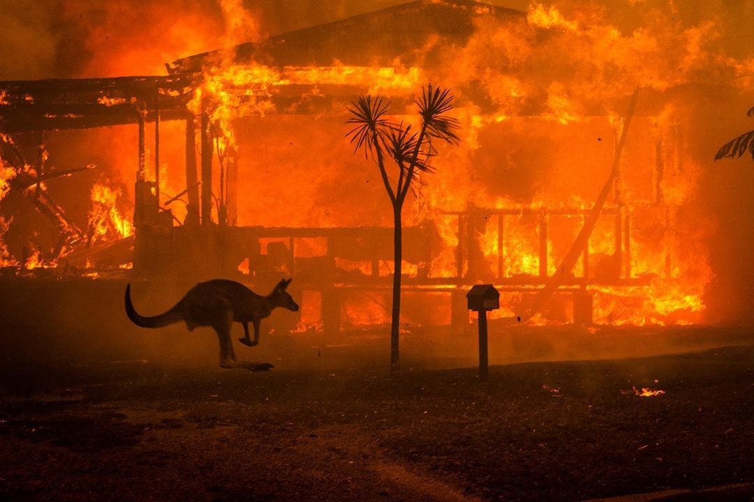 Terrifying Pictures of Australia's Bushfires